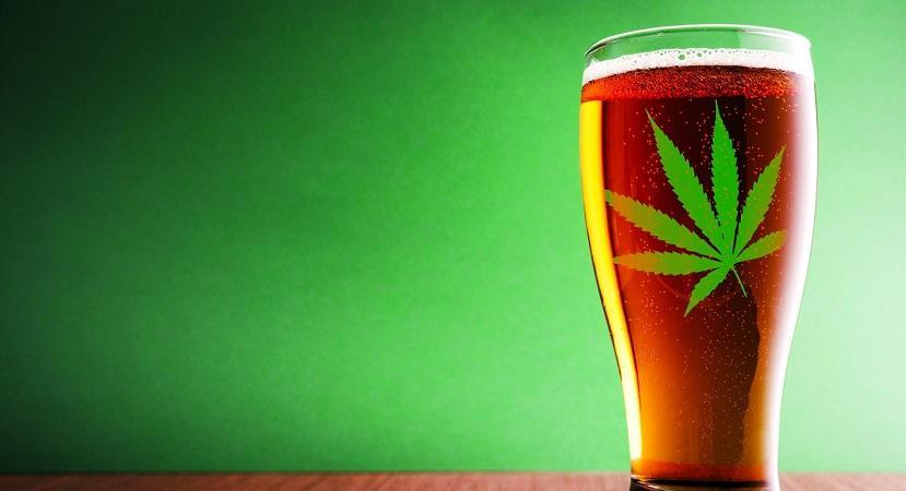 Пиво после марихуаны купить конопли в хабаровске